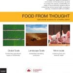 Cover of Food from Thought publication