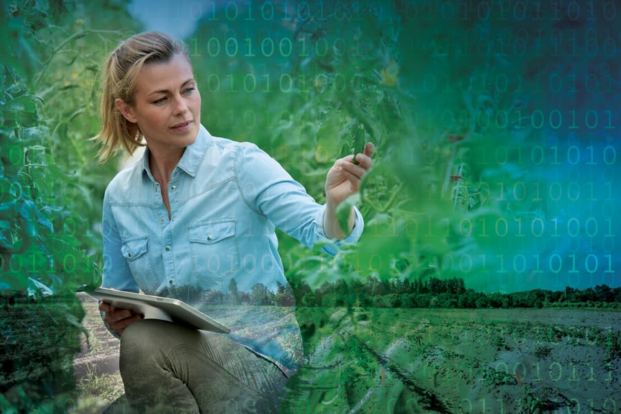 Image of person with iPad in field with digital overlay