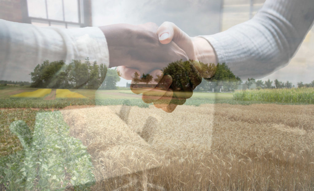 Image of shaking hands superimposed over crop field