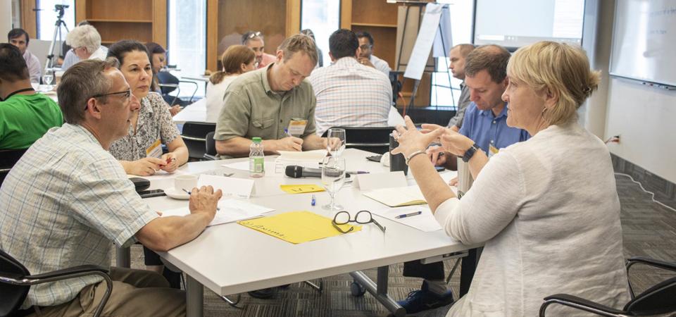 Karen discussing with data workshop members