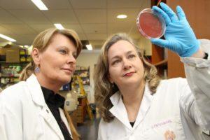 Professor Bonnie Mallard and Lauri Wagter-Lesperance look at a petri dish in a lab